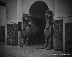 Assyrian Lamassu (Armin Hage) Tags: museedulouvre louvre paris france orientalantiquesgallery babel mesopotamia assyrian assyrianlamassu lamassu