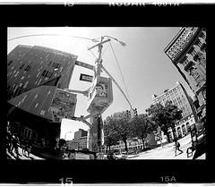 The Fonz (New Paltz Camera Company) Tags: fonzie sticker fonz new york ny manhattan bob esposito filter kodak trix 400 expired 35mm film xtol 11 developer epson v600 scanner black white monochrome analog analogue henry winkler