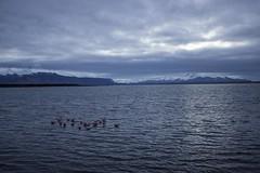 Puerto Natales (Medigore) Tags: cielo medigore canont3i aire libre arena serenidad campo paisaje cerros montaas ngc monocromtico reflejo mountain clouds blue azul sea puerto natales landscape colors