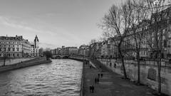 Quai de seine a PARIS (xpressx) Tags: pave photographe blanc 18105 banc passionphotonikon 18105mm seine amoureux wb noir d7100 lightroom nikond7100 bw exposure nikon nikkor bn white