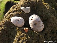 We is love? (♥ Reino Já Cheguei ♥) Tags: sea love praia beach nature heart stones natureza pebbles coração pedras seixos shapped