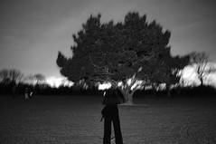 . (Joey Scannell) Tags: distortion tree night dark landscape joseph mine flash creepy scannell