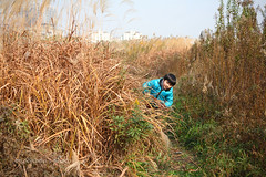 _MG_3685 (baobao ou) Tags: family boy kids funny asia child 52weeks familygetty2011