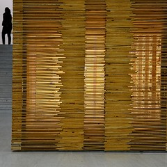 Exploring relations of permeability (TheManWhoPlantedTrees) Tags: wood lines stairs lisboa cam arts 100views bsquare centrodeartemoderna permeability carlosnogueira quadratum tmwpt olugardascoisas aplaceforallthings