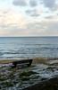 17-1-2013 (Copperhobnob) Tags: sea snow beach coast scotland sand rocks aberdeenshire stones stcombs rocls