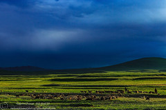 Deosai National Park, Pakistan. (Nadeem Khawar.) Tags: pakistan deosai deosainationalpark skardu pakistaniphotographer landscapephotographer nadeemkhawar gettyimagesmiddleeast