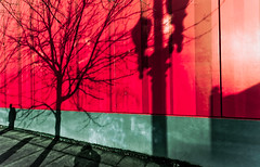 Red Wall...Me & Shadow People (Orbmiser) Tags: winter red abstract tree wall oregon portland nikon cityscape shadows stripes wide sidewalk ultrawide d90 sigma1020