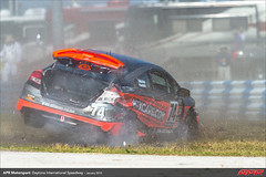 DIS-CTSCC-Race-2013197