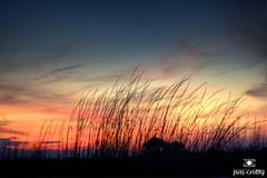 Wolf Moon and Sunset | January 26 2013 by Jim Crotty 2 (jimcrotty.com) Tags: ocean sunset usa moon art beach beauty landscape photography photographer southcarolina peaceful calm coastal moonrise serene hiltonheadisland jimcrotty january262013 burkesbeachpark