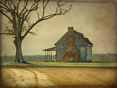 The House on the Hill:  Nash County, North Carolina (EdgecombePlanter) Tags: sunset painterly watercolor nc cabin path textures lonely textured dirtpath brickchimney lonelyoak
