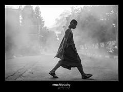 Monk (Muchilu) Tags: monk sing thai wat thailandia humo phra monje muchi michigraphy