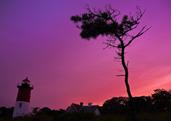 Tree silhouette at Nauset Light Beach sunset (Jacopo Cambi) Tags: sunset panorama lighthouse tree beach landscape faro tramonto cape cod albero silhoutte nauset