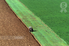 Tractor working in a field (Oct 2005) (Michele Berti) Tags: tractor film field analog landscape landscapes countryside wheat working campagna campo valdorcia paesaggi paesaggio analogica grano cretesenesi lavoro trattore wheatfield campi agricoltura pellicola agricolture campodigrano tuscancountryside campagnatoscana analogicait coloridellavaldorcia fotografiedellavaldorcia fotografiedellecretesenesi