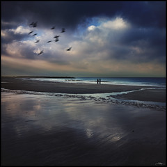 Soledades II (J.R.Rey) Tags: people seascape color beach birds nikon loneliness gente tide playa pajaros soledad cdiz marea