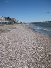 Penfield Beach, Post Storm (lllierin) Tags: shells beach connecticut shore pointshoot fairfield longislandsound penfield