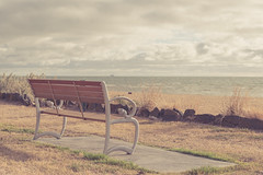 Day Dream (wd34) Tags: summer beach nature bench relax landscape seaside chair nikon warm brighton soft afternoon calm romantic fade dreamy d800 2470