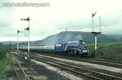 M018-00205 (railphotolibrary.com) Tags: blue england mountains train europe pacific railway steam hills signals cumbria headboard streamlined preserved sir nigel ulverston semaphore cumbrian 462 uk1 gresley 4498 a4c