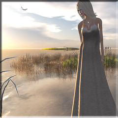 someday... (Renee_ Parkes) Tags: truth renee secondlife dreamworld ikon justvisiting glitterati drift jamman slfashion reneeparkes gewunjo