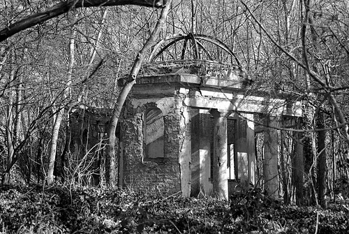 Ruin in the Woods. IMGP7947