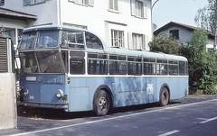 1997-09, VBZ, Lenzburg, Autobus FBW Hochlenker 246 (Fototak) Tags: switzerland autobus 246 vbz fbw tüscher hochlenker