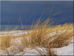 Spring at the Baltic Sea (Ostseetroll) Tags: winter sea spring olympus baltic ostsee frühling niendorf e620