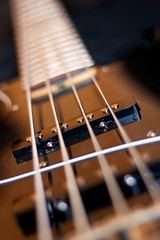 Pick-up close-up (Rob Emes) Tags: canon 50mm dof bass guitar pickup fender 7d 365 365project 3652013 mar2013