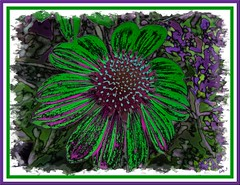 Sliders Sunday 3/24/13 (Kathy_9) Tags: detail echinacea kathy layers eyed topaz sliders hss pink happy sunday susan kathy9 pspx5 modes blending