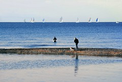 Tutti al mare (meghimeg) Tags: dog men cane mare ship barche sail chiavari 2012 uomini vele