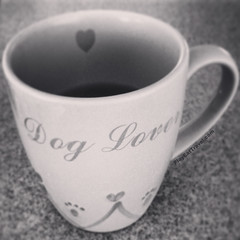 Coffee & Dog Lover (IMJPRO) Tags: morning family blackandwhite bw food dog pet pets white black love cup coffee breakfast puppy photo cafe promo warm yum image drink expression web beverage picture lifestyle tasty eat website online mug brunch espresso pup lover caffeine k9 promote imj playeattravelcom imjproductions