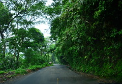 To Munnar! (yashbabar) Tags: kerala tourism travel trip nikond5100 18140mm india vacation munnar hillstation