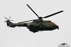 CGX Cougar Aviation Lgre de l'Arme de Terre (Guillaume Carr) Tags: cgx cougar aviation lgre de larme terre spotting toulouse blagnac 2016