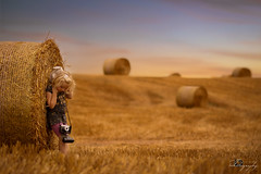 ... August ... (Margarita K...) Tags: southwales south wales beautifulwales sunset goldenhour wheat grain bale field gold golden child childhood fairytales portrait ngc landscape nikon d5200 mkphotography margaritakphotography