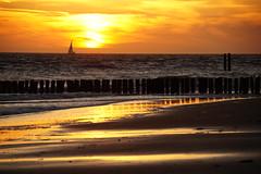 Golden beach (Dannis van der Heiden) Tags: sea beachpoles beach sundown goldensky walcheren zeeland vlissingen netherlands sailboat summertime summer sigma18300mm slta58 water