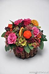 #Compact voor het #Najaar... (floralworkshops) Tags: hortensia lampion peperbes