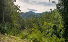 459 Mount Coxcomb Road, Upper Lansdowne NSW