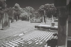 Berrima Cemetery (goodfella2459) Tags: nikon f4 af nikkor 24mm f28d lens ilford sfx 200 35mm black white film analog hoya ir r72 filter berrima cemetery tombstones infrared southern highlands new south wales milf