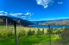 LC-dsc-B-1418 (pchida) Tags: green blue sky mountains lake landscape landscapephotography nikonphotography d5100 sigma 1020mm
