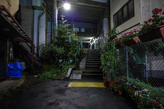 untitled (Noisy Paradise) Tags: tokyo night street japan longexposure shibuya urban sigmadp0quattro foveon  rain