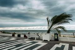 Hallo Herfst (H. Bos) Tags: zandvoort zandvoortaanzee amsterdambeach strand beach zee sea lucht sky wolken clouds weer weather herfst autumn season nikfx