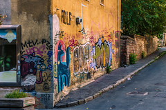 Rat and dog at the corner (Master Iksi) Tags: street streetphotography streetart srbija serbia structure graffiti beograd belgrade building art architecture canon 700d mouse rat dog