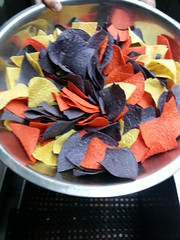"Tortilla Chips • <a style=""font-size:0.8em;"" href=""http://www.flickr.com/photos/79614404@N04/8366757966/"" target=""_blank"">View on Flickr</a>"