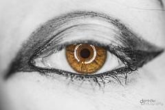 Citrics Eye (Dornhfer Photography / Blood Rose Arts) Tags: macro eye makro eyecatcher ringlight