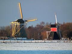 The mills of Oud-Zuilen (Frans.Sellies) Tags: snow mill netherlands windmill europe utrecht day windmills clear mills oudzuilen abigfave dscf2360