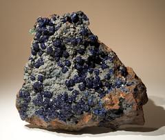 Azurite on Limonite (Stan Celestian) Tags: crystals minerals azurite limonite gossan morencimine azuriteonlimonite