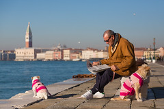 Continental Chic (Man, Newspaper & Dogs), Venice (flatworldsedge) Tags: pink venice sunlight m