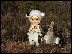 I think the sheep and the rabbit can be friends :) (Leshan1) Tags: hat doll vespa helmet blythe leshan lalatroop icerune