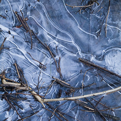 the frozen forest (helveticaneue) Tags: winter abstract cold ice water leaves puddle frozen sticks patterns freeze ripples february 2013 mondaukcommon