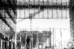 Step into my World III (Jeff Krol) Tags: world street city people urban blackandwhite bw reflection wet netherlands monochrome rain silhouette person mono shiny noir upsidedown noiretblanc sony streetphotography pedestrian cybershot denhaag flip reflective series blanc thehague 2013 rx100 dsc01641 fujilove sonyrx jeffkrol sonyrx100 sonycybershotrx sonydscrx100
