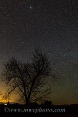 A Tree In The Night (Matt Currier Photography) Tags: arizona tree night canon dark way stars sedona az 5d milky markiii 24l 5diii