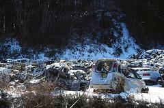 (slo:motion) Tags: leica trees snow tree japan earthquake tsunami  miyagi    shizugawa minamisanriku   honsh thoku  utatsu march2012    2011thokuearthquakeandtsunami